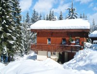 Chalet close to piste with outdoor hot tub